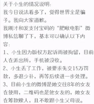 网爆胖鸟电影站长因盗版侵权被罚数万 审查 网站 站长 微新闻 第2张